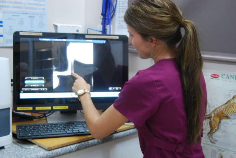Digital X-Ray Facilities